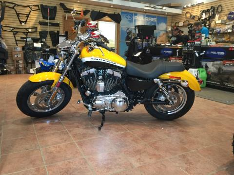 2011 Harley-Davidson Sportster® 1200 Custom in Chicora, Pennsylvania
