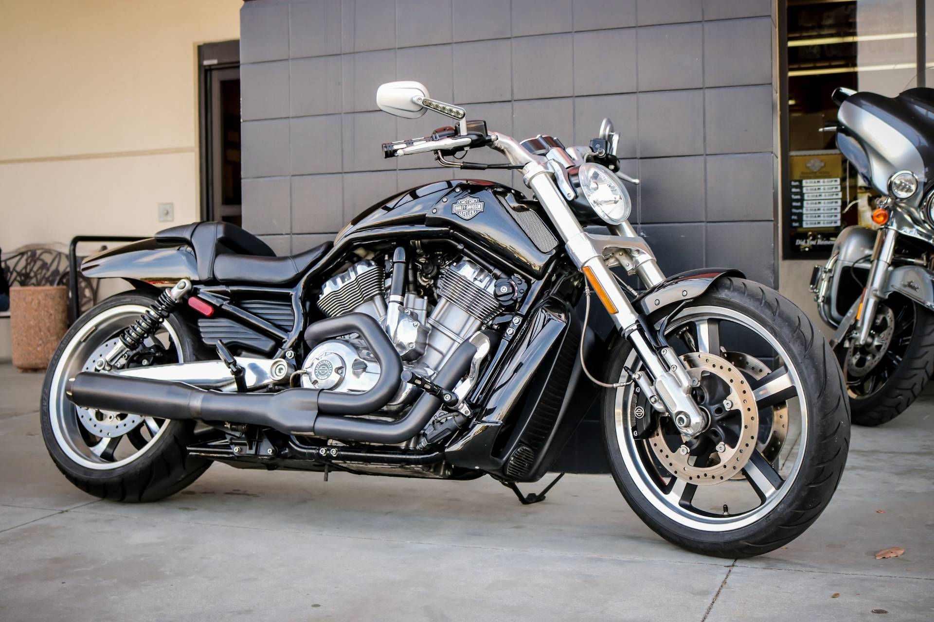 2015 Harley-Davidson V-Rod Muscle® in Montclair, California