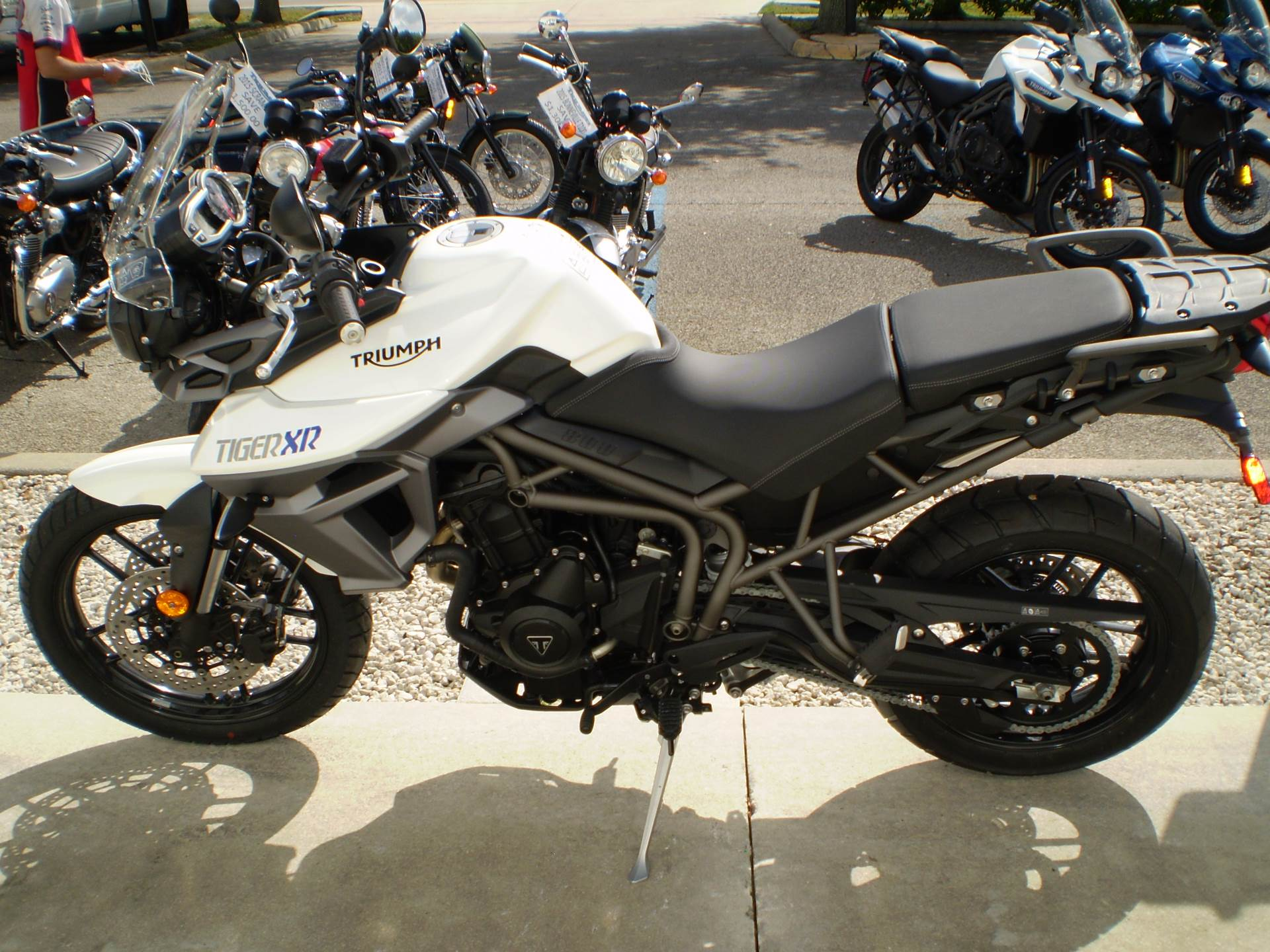 2016 Triumph Tiger 800 XR in Stuart, Florida