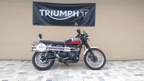 2007 Triumph Scrambler in Shelby Township, Michigan
