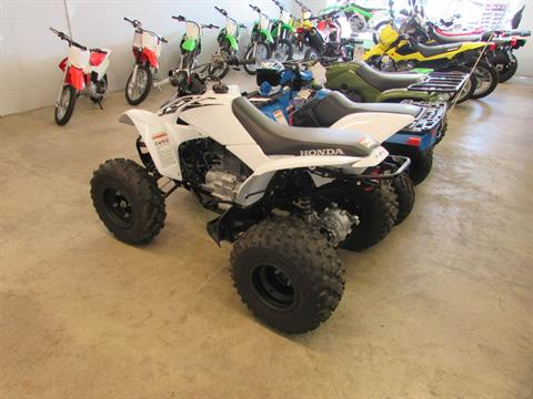 2016 Honda TRX250X in Jamestown, New York