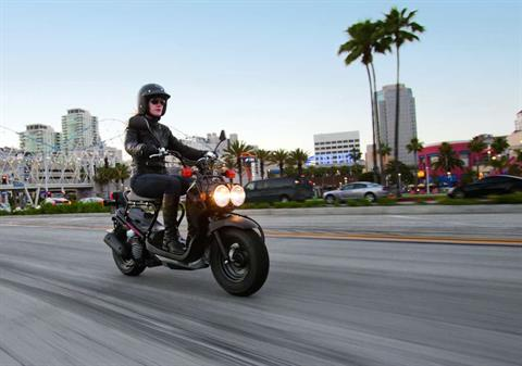 2016 Honda Ruckus Black in Scottsdale, Arizona