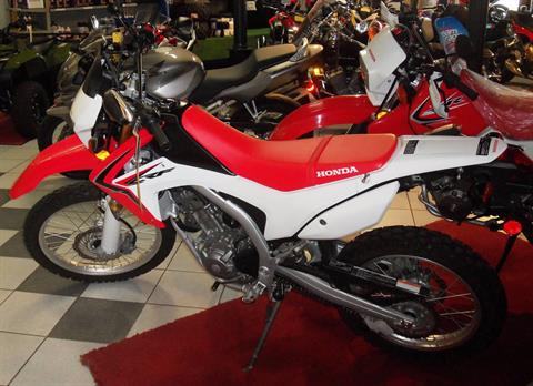 2014 Honda CRF®250L in Palatine Bridge, New York