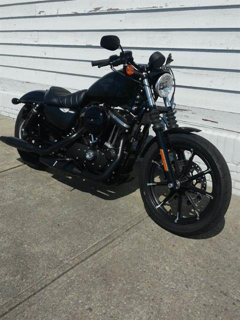 2017 Harley-Davidson Iron 883™ in Columbus, Ohio