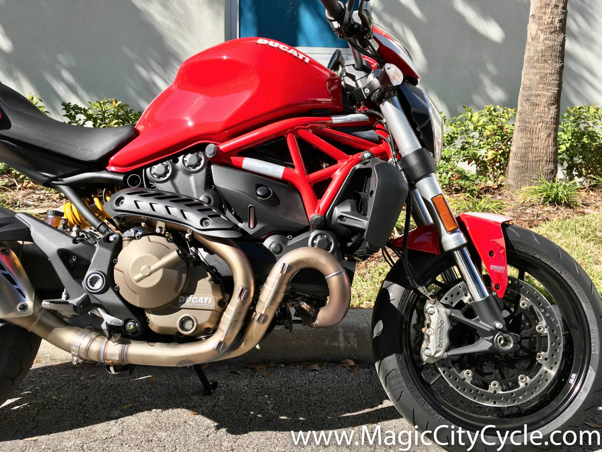 2016 Ducati Monster 821 in Orlando, Florida