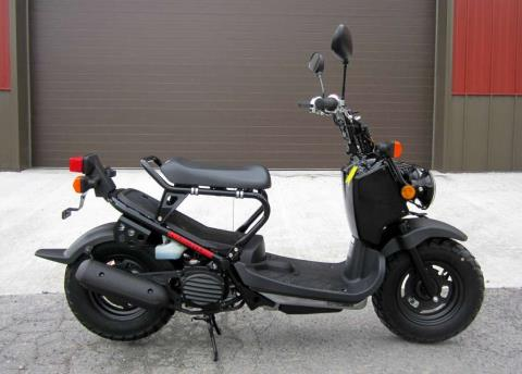 2015 Honda Ruckus® in Tyrone, Pennsylvania