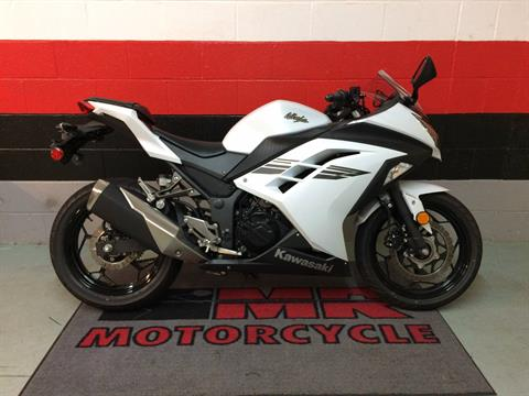 2017 Kawasaki Ninja 300 ABS in Asheville, North Carolina