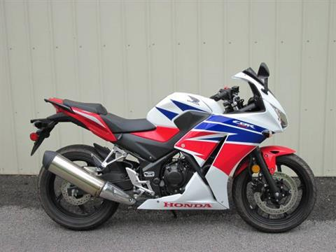 2015 Honda CBR®300R in Guilderland, New York