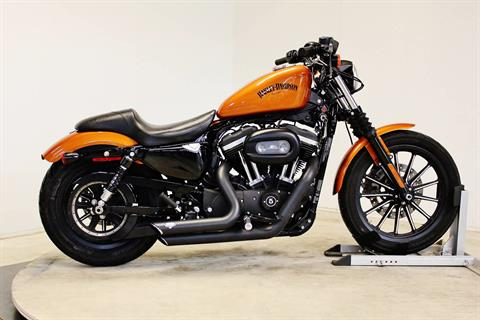 2014 Harley-Davidson Sportster® Iron 883™ in Pittsfield, Massachusetts