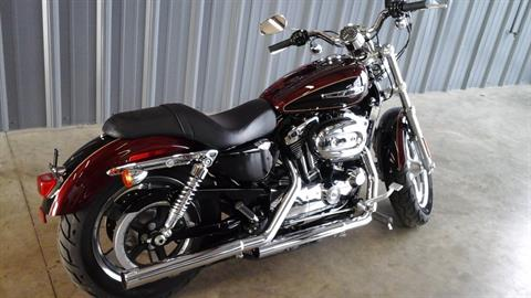 2015 Harley-Davidson 1200 Custom in Ozark, Missouri
