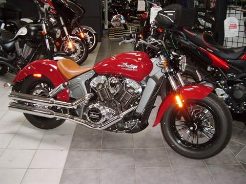 2015 Indian Scout™ in New Haven, Connecticut