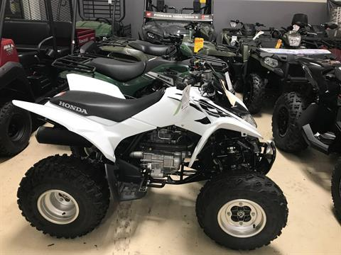 2017 Honda TRX250X in Corona, California