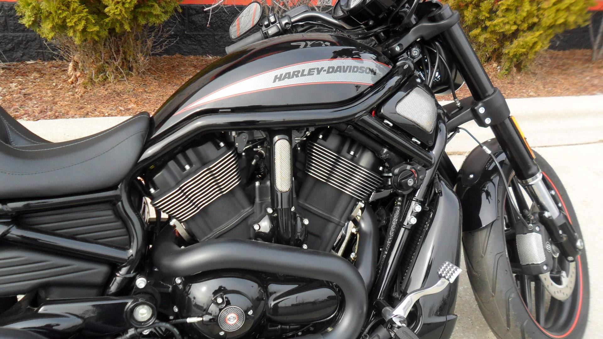 2016 Harley-Davidson Night Rod® Special in Sheboygan, Wisconsin