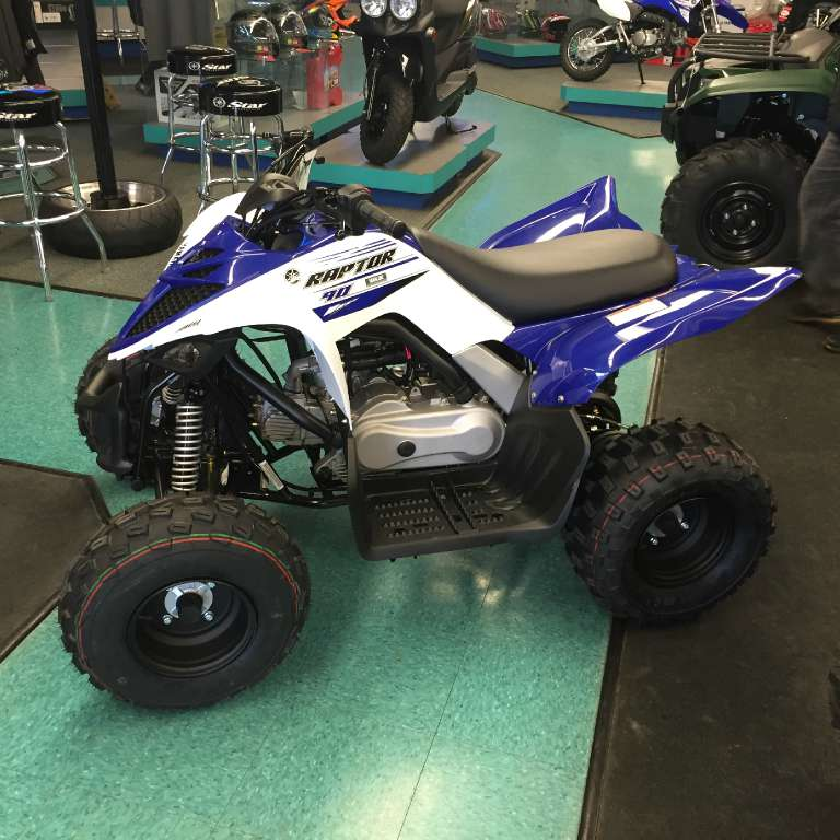 2016 Yamaha Raptor 90 in Hobart, Indiana