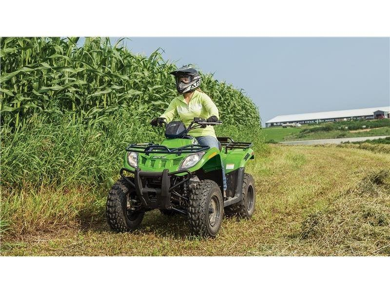 2016 Arctic Cat 300 in Trego, Wisconsin