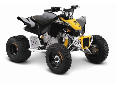 2014 Can-Am DS 90™ X® in Elizabethton, Tennessee