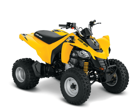 2016 Can-Am DS 250 in Enfield, Connecticut