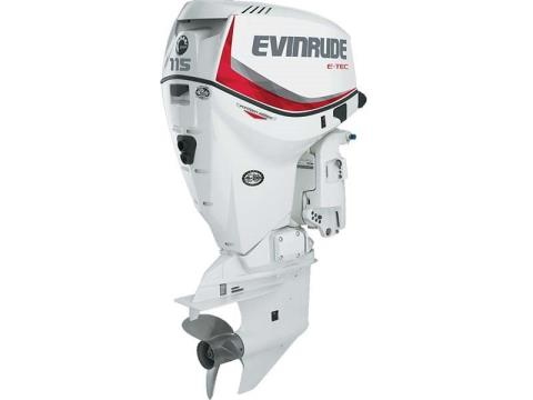 2016 Evinrude Pontoon E115SNL in Sparks, Nevada