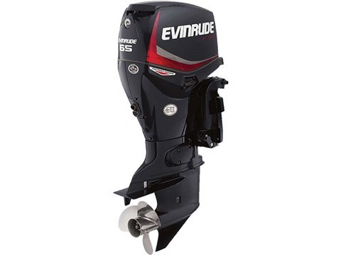 2016 Evinrude Pontoon E65GNL in Roscoe, Illinois