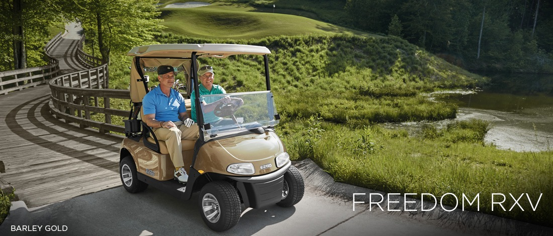 2017 E-Z-Go Golf Freedom RXV Electric in Beaver Dam, Wisconsin