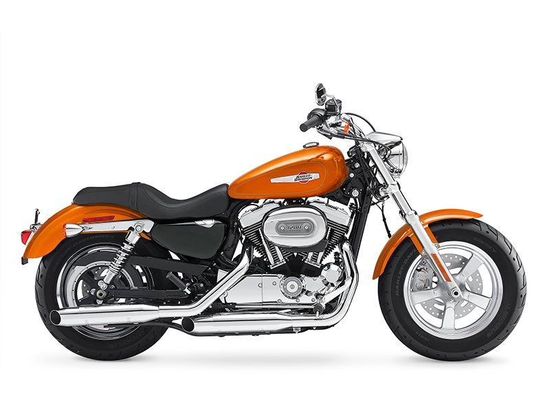 2015 Harley-Davidson 1200 Custom in Guilderland, New York