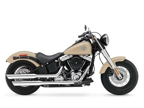 2015 Harley-Davidson Softail Slim® in Mankato, Minnesota