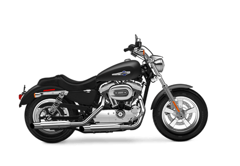 2016 Harley-Davidson 1200 Custom in New York Mills, New York