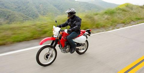 2015 Honda XR650L® in Phoenix, Arizona