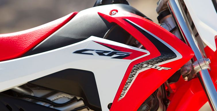 2016 Honda CRF110F in Monroe, Michigan