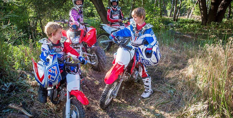 2016 Honda CRF50F in Monroe, Michigan