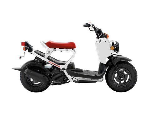 2016 Honda Ruckus in Hendersonville, North Carolina