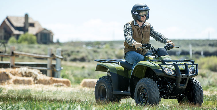 2017 Honda FourTrax Recon in Monroe, Michigan