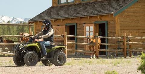 2017 Honda FourTrax Recon ES in Monroe, Michigan