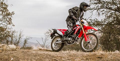 2017 Honda CRF250L Rally in Monroe, Michigan