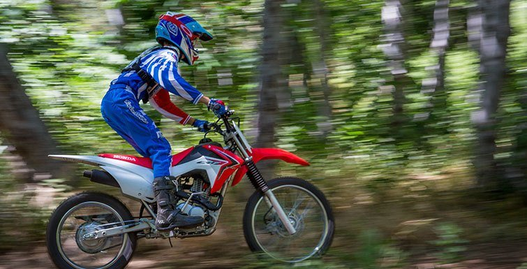 2017 Honda CRF125F (Big Wheel) in Monroe, Michigan