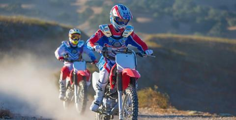 2017 Honda CRF150F in Monroe, Michigan