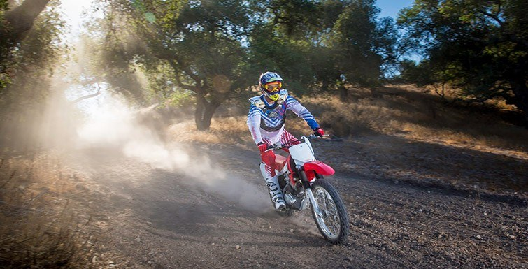 2017 Honda CRF230F in Fairfield, Illinois