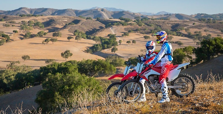 2017 Honda CRF230F in Monroe, Michigan