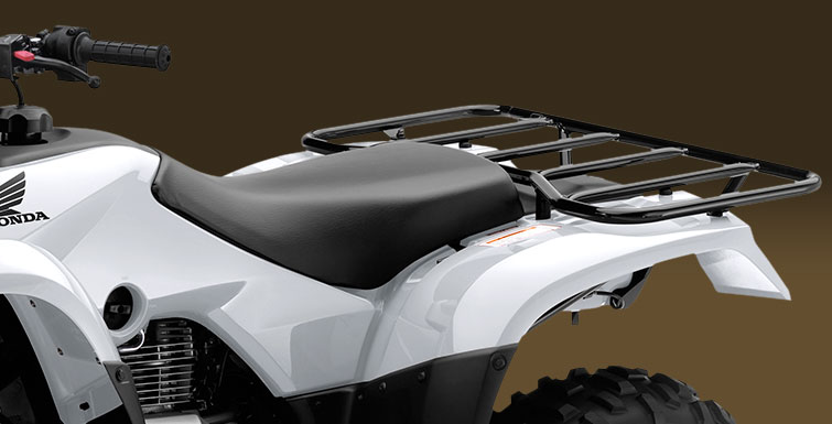 2018 Honda FourTrax Recon in Monroe, Michigan