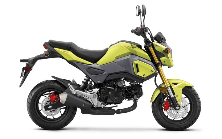 2018 Honda Grom in Chattanooga, Tennessee