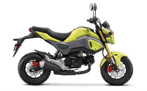 2018 Honda Grom in Ithaca, New York