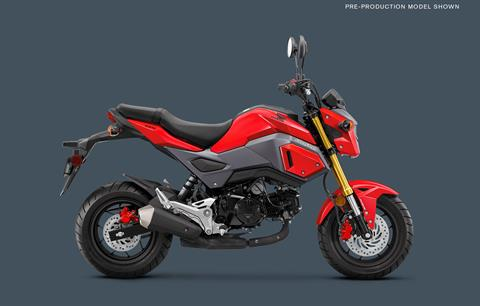 2018 Honda Grom ABS in Mount Vernon, Ohio