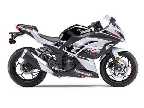 2014 Kawasaki Ninja® 300 ABS SE in Monroe, Michigan
