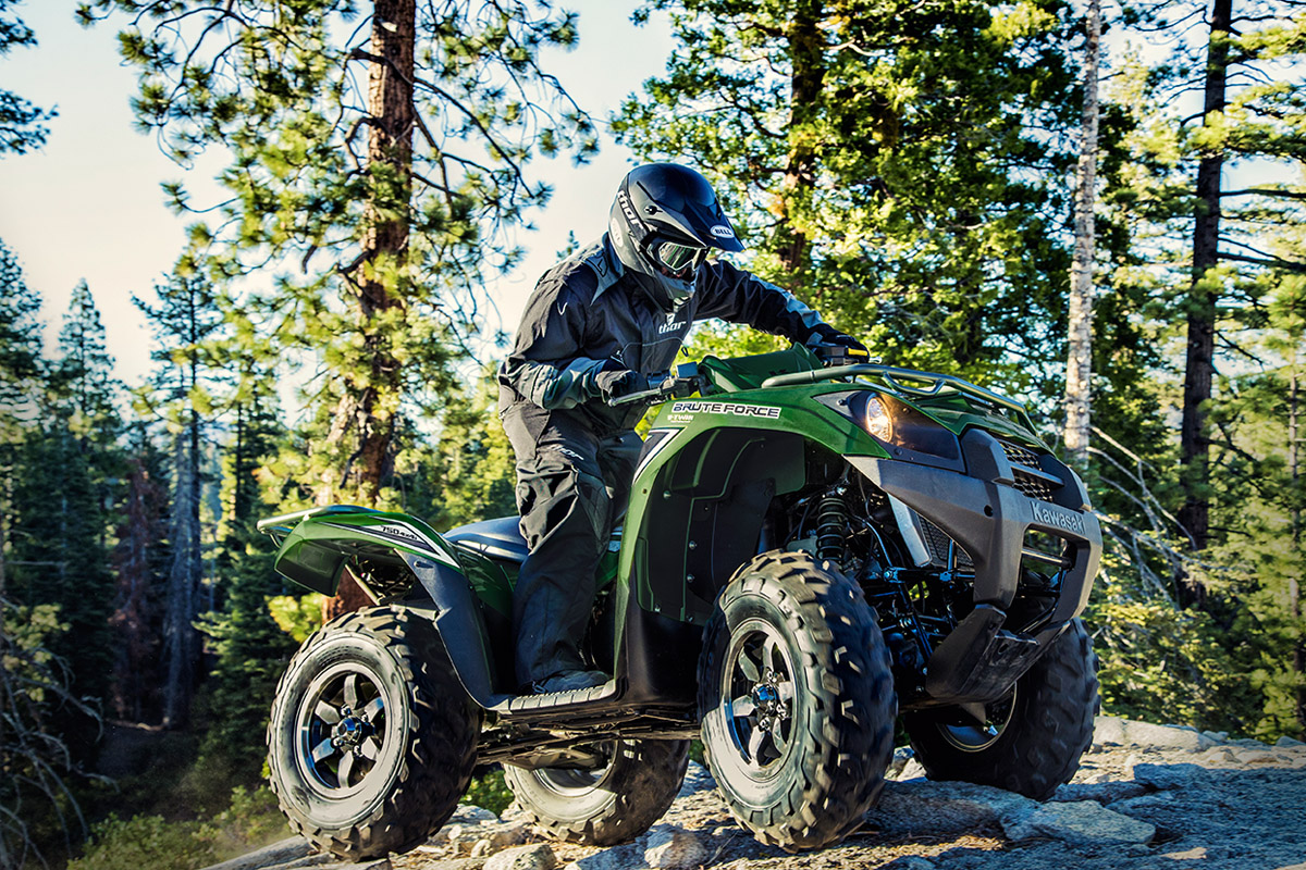 2017 Kawasaki Brute Force 750 4x4i in Auburn, New York