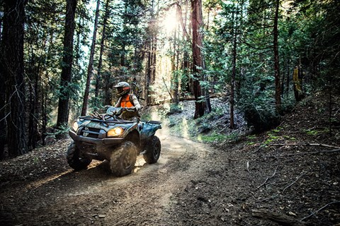2017 Kawasaki Brute Force 750 4x4i EPS in Bellevue, Washington