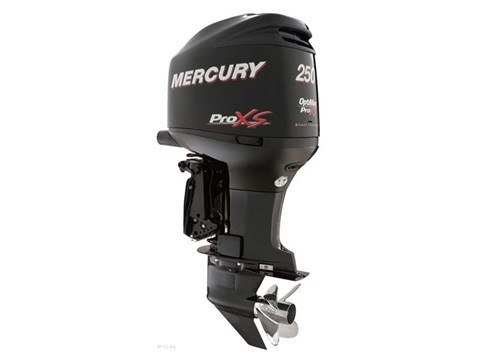 2011 Mercury Marine OptiMax 250 Pro XS in Harriman, Tennessee