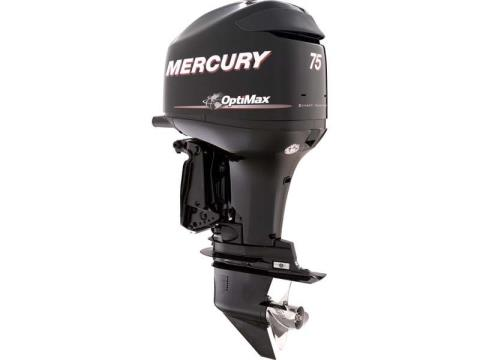2014 Mercury Marine 75 ELPT OptiMax in Harriman, Tennessee