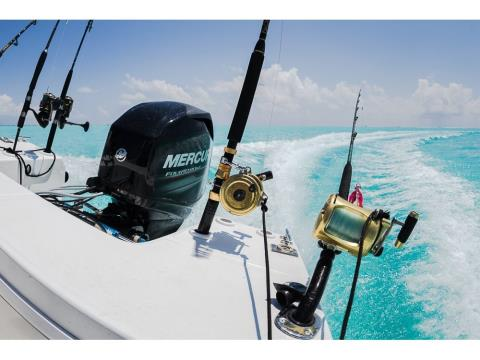 2017 Mercury Marine 115 hp FourStroke in Lake City, Florida