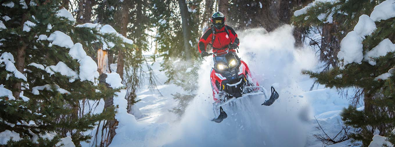 2016 Polaris 800 Pro-RMK 163 in Billings, Montana