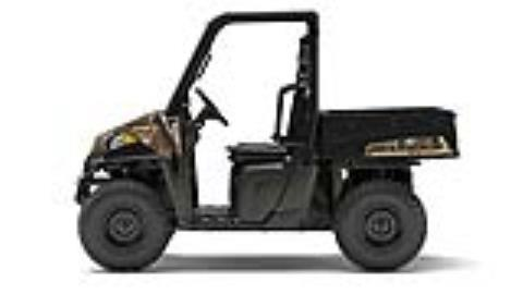 2017 Polaris Ranger EV in Brighton, Michigan